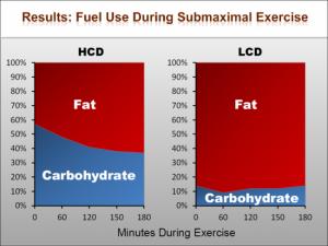 fat adaptation 5